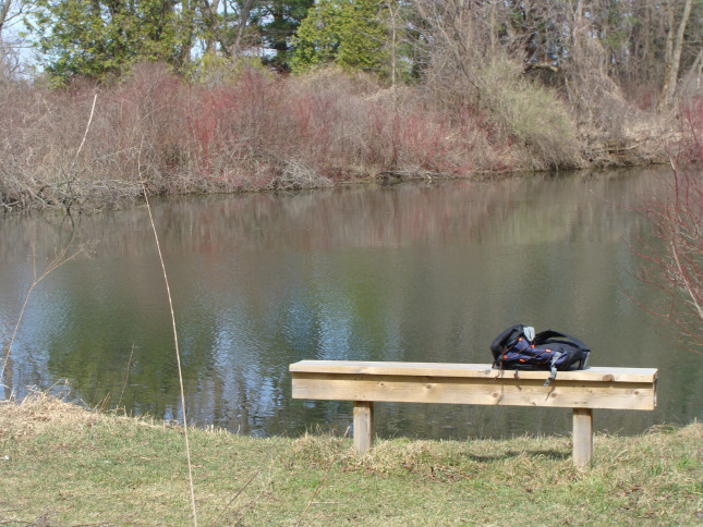 I have spent many hours sitting on this bench at the pond at the back of the Clark Wright Conservation Area