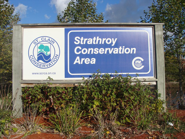 Close to home, the Strathroy Conservation Area has been the source of many enjoyable walks and exploration.